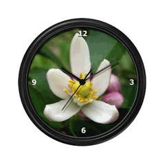 Lemon Blossom Clock